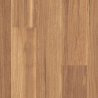 Mountain Spotted Gum